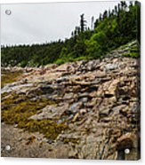 Low Tide - Walking On The Bottom Of Saint Lawrence River Acrylic Print