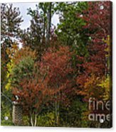 Lowcountry Fall Color Acrylic Print