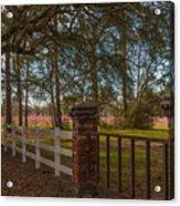 Lowcountry Gates To Boone Hall Plantation Acrylic Print