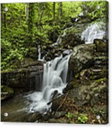 Lower Amicalola Falls Acrylic Print by Debra and Dave Vanderlaan