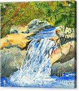 Lower Burch Creek Acrylic Print