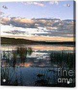 Lower Carter Pond At Dusk Acrylic Print