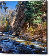Lower Cottonwood 2014 II Acrylic Print