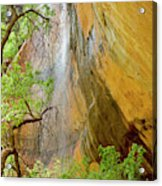Lower Emerald Pool Waterfall Red Rock Acrylic Print