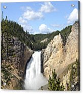 Lower Falls In Yellowstone National Park Acrylic Print