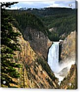 Lower Falls On The Yellowstone River Acrylic Print
