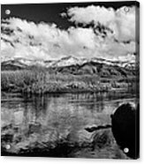 Lower Owens River Acrylic Print