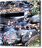 Lower Part Of Munising Falls Acrylic Print