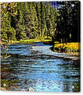 Lower Truckee River Acrylic Print