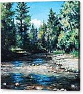 Lowry Creek Run Acrylic Print by Mike Worthen
