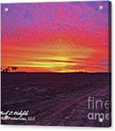 Loxley Al Sunset Dec 2013 I Acrylic Print