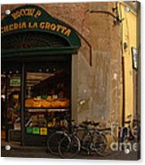 Lucca Italy Acrylic Print