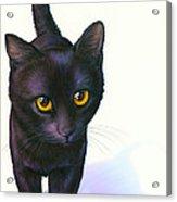 Lucky Cat Acrylic Print