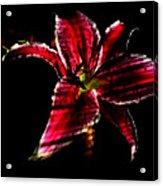 Luminet Darkness Acrylic Print