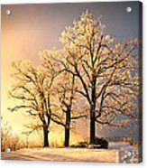 Luminous - Blue Ridge Winter Sunset Acrylic Print