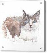 Luna Meade Acrylic Print