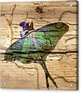 Luna Moth Worm Wood  Acrylic Print