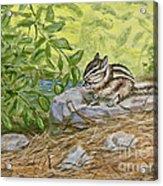 Lunch Ala Rock Acrylic Print