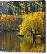 Lundy Lake In Fall Acrylic Print