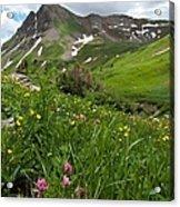 Lush Colorado Summer Landscape Acrylic Print