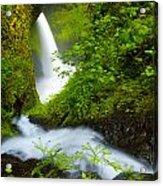 Lush Gorge Falls Acrylic Print