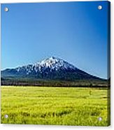 Lush Green Meadow And Mount Bachelor Acrylic Print