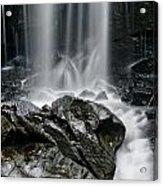 Lwv20052 Acrylic Print