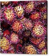 Lychee Fruit - Mercade Municipal Acrylic Print