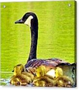 Ma And Kids Acrylic Print