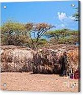 Maasai Huts In Their Village In Tanzania Acrylic Print