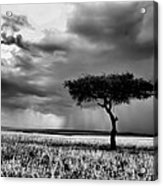 Maasai Mara In Black And White Acrylic Print