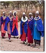 Maasai Women In Front Of Their Village In Tanzania Acrylic Print