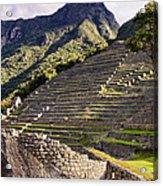 Macchu Picchu - Peru   Acrylic Print