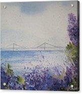 Mackinac Island Lilacs Acrylic Print
