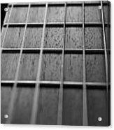 Macro Guitar Strings Acrylic Print