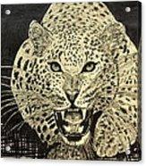 Mad Cat Acrylic Print