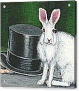 Mad March Hare -- Now You See How It Feels Acrylic Print by Sherry Goeben