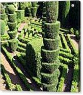 Madeira Botanic Gardens Topiary Acrylic Print