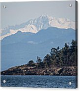 Madrona In December Acrylic Print