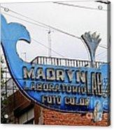 Madryn Lab Whale Sign Acrylic Print