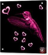 Magenta Hummingbird - 2055 F Acrylic Print