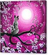Magenta Morning Sakura Acrylic Print