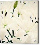 Magic Flowers Acrylic Print