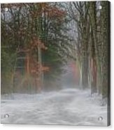 Magic In The Fog 3 Acrylic Print