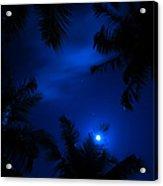 Magic Of The Night Sky 1 Acrylic Print