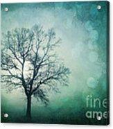 Magic Tree Acrylic Print