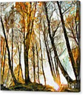 Magical Forest - Drawing Acrylic Print