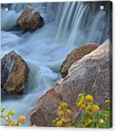 Magical Waters Acrylic Print