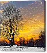 Magical Winter Sunset Acrylic Print