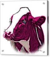 Magneta Cow Holstein - 0034 Fs Acrylic Print